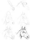 Название: Рисуем 50 лошадей Серия: Рисуем 50 Автор: Ли Эймис Издательство...
